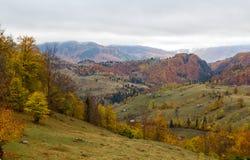 Panorama del otoño Imagen de archivo libre de regalías