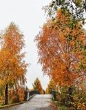 Día lluvioso en el otoño Foto de archivo