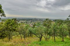 Día lluvioso en el parque Wilson australia fotos de archivo