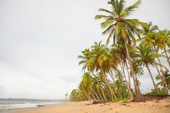 Día lluvioso en una isla tropical Fotos de archivo libres de regalías