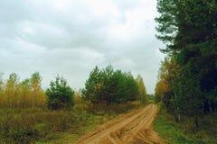 Día melancólico del otoño del camino de tierra Fotografía de archivo libre de regalías