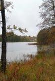 Día mojado del otoño, entre abedules en el lago Polonia Linowo Fotos de archivo