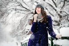 Día Nevado Imagen de archivo libre de regalías