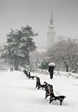 Día Nevado Imágenes de archivo libres de regalías