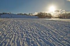Día Nevado del invierno en el parque Fotografía de archivo