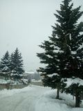 Día Nevado en Armenia Tsaxkadzor Fotografía de archivo libre de regalías
