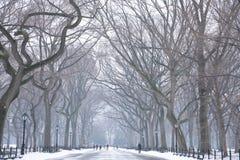 Día Nevado en NYC Foto de archivo libre de regalías