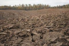 Día nublado del otoño con el campo arado en campo Imagen de archivo