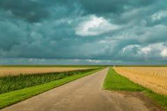 Día nublado en un campo holandés, Pieterburen Imagen de archivo libre de regalías