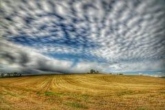 Día nublado sobre campo imagen de archivo