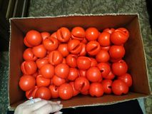 Día rojo de la nariz Las consecuencias foto de archivo libre de regalías