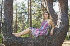 Día soleado brillante en la muchacha del bosque del otoño que se sienta en un árbol de pino Imagen de archivo libre de regalías
