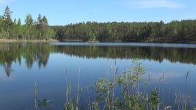 Día soleado de junio en el lago Pappilanlahti Ruokolahti, Finlandia almacen de video