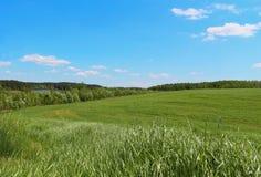Día soleado del campo en el río del horizonte Mesa excelente Imagen de archivo libre de regalías