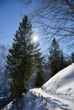 Día soleado del invierno en las montañas de las montañas suizas Foto de archivo libre de regalías