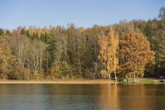 Día soleado del otoño en el lago Foto de archivo libre de regalías