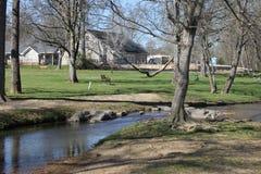 Día soleado en el día del perfet del río a ser aire libre Fotos de archivo