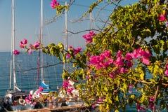 Día soleado en el puerto deportivo Imágenes de archivo libres de regalías