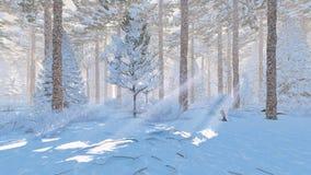 Día soleado en un bosque spruce nevoso ilustración del vector