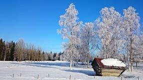 Día soleado frío en Suecia septentrional Foto de archivo libre de regalías