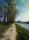 Día soleado hermoso al lado de un lago Foto de archivo libre de regalías