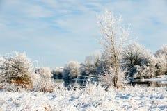 Día soleado hermoso en el invierno en el río Imágenes de archivo libres de regalías