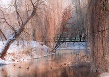 Día soleado hermoso en un parque de la ciudad Imagenes de archivo