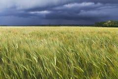 Día tempestuoso fotografía de archivo