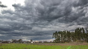 Día tempestuoso y ventoso en el bosque cerca del pueblo almacen de video