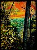 Día torcido del otoño en la garganta fotografía de archivo