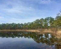 Día tranquilo en Patsy Pond Fotografía de archivo libre de regalías