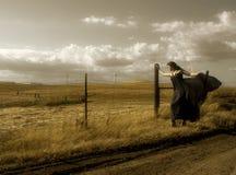 Día ventoso Imagen de archivo libre de regalías