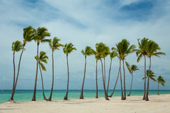 Día ventoso en la República Dominicana Fotos de archivo
