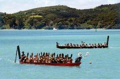 Día y festival - HOL de Waitangi del público de Nueva Zelanda Fotos de archivo