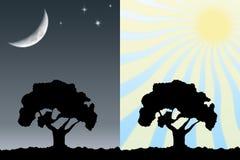 Día y noche ilustración del vector