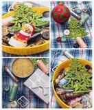 Días de fiesta del Año Nuevo del collage Imágenes de archivo libres de regalías
