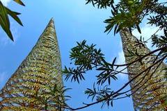 Días de fiesta en Camboya hermosa vista de la playa Mundo impresionante del viaje Resto del verano Fotos de archivo libres de regalías