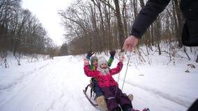 Días de fiesta de la familia, padre que tira del hijo y de la hija felices en trineo en bosque del parque del invierno metrajes