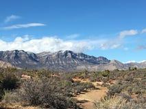 Días del desierto Fotos de archivo libres de regalías