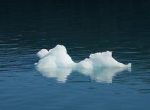Dígito binario del iceberg Fotos de archivo