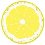 Dígito binario del limón stock de ilustración