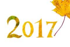 2017 dígitos cinzelaram das folhas de bordo em um fundo branco fotos de stock royalty free