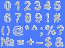 Dígitos do dente-de-leão com as sementes no fundo azul fotos de stock royalty free