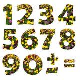 Dígitos florales Foto de archivo libre de regalías
