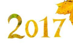 2017 dígitos tallaron de las hojas de arce en un fondo blanco Foto de archivo libre de regalías