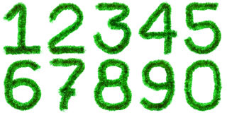 Dígitos verdes foto de stock