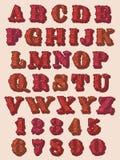Dígitos y letras florales decorativos del alfabeto Fotos de archivo