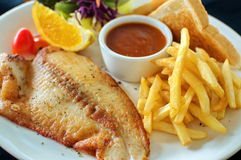 Dîner de barbecue de bifteck de poissons Photographie stock libre de droits
