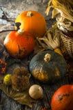 Dîner de jour de thanksgiving image libre de droits