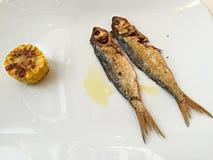Dîner de sardine en Italie Photos stock